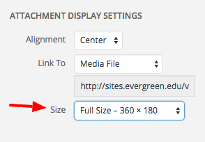 Set image size = Full Size for animated GIFs