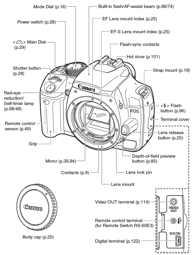 digital slr  search and digital slr cameras on pinterest