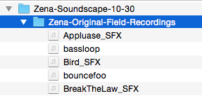 Folder of field recordings.png