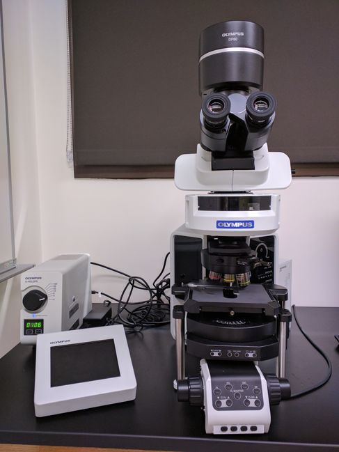 Olympus BX63 Upright Microscope